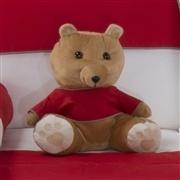 Urso Requinte M Marrom com Camiseta Manga Longa Vermelha