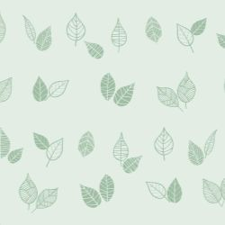 Papel de Parede Folhas Fundo Verde