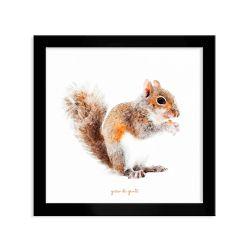 Quadro Infantil Esquilo da Floresta Preto